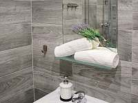 Dvoulůžkový apartmán s přistýlkou koupelna - k pronájmu Krásná Lípa