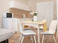 Dvoulůžkový apartmán s přistýlkou kuchyň - k pronajmutí Krásná Lípa