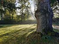 zahrada - apartmán ubytování Chřibská - Krásné Pole