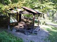 Jetřichovice - chata k pronájmu - 24