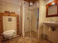 Apartmán v přízemí - koupelna - Krásná Lípa