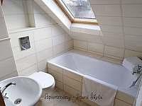Podkrovní apartmán - koupelna - Krásná Lípa