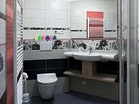 Koupelna apartmánu 1 - chalupa k pronájmu Dolní Chřibská