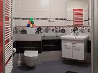 Koupelna apartmánu 2 - chalupa k pronajmutí Dolní Chřibská