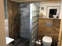 Koupelna v přízemí - chalupa k pronájmu Sněžník