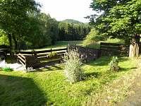Jetřichovice - Rynartice - chalupa k pronajmutí - 4