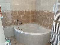 Koupelna a WC v přízemí - chalupa k pronajmutí Mikulášovice