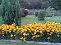 zahrada - Nové Hraběcí