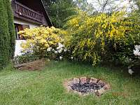 Jetřichovice - chata k pronajmutí - 6