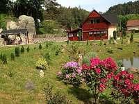 Chalupa k pronajmutí - okolí Jetřichovic