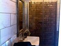koupelna v přízemí - pronájem chalupy Krásný Buk