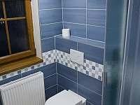 4 lůžkový apartmán č.2 koupelna - k pronájmu Kunratice - Studený