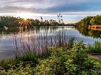 Rybniště rybolov - Dolní Chřibská