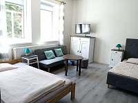 Apartmán 1 - ubytování Mikulášovice