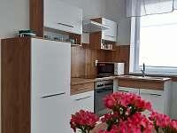 Apartmán 1 - k pronájmu Mikulášovice