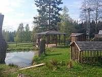 Jetřichovice - Rynartice - chata k pronájmu - 6