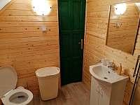 Apartmán 2 koupelna s WC - chalupa k pronájmu Brtníky