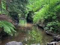 Lesenský potok - chata k pronájmu Dolní Podluží