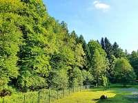 Zahrada - chata k pronájmu Dolní Podluží