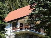 Jetřichovice - chalupa k pronajmutí - 4