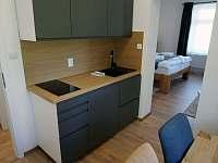Apartmán č.2 - k pronajmutí Krásná Lípa