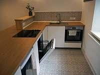 Společná místnost - kuchyň - apartmán k pronajmutí Krásná Lípa