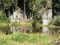 jezírko v lese - chalupa k pronajmutí Dolní Žleb