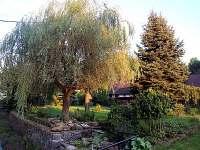 Zahrada - chalupa k pronajmutí Horní Chřibská