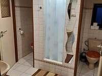 Koupelna + WC - pokoje - chata k pronájmu Jiřetín pod Jedlovou