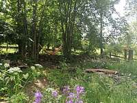 Pohled z terasy na zahradu - chalupa k pronájmu Krásná Lipa