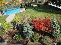 Zahrada s bazénem