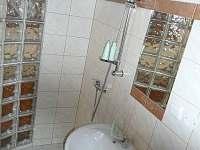 Koupelna s wc v apartmánu