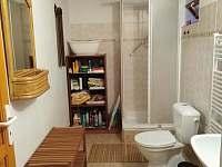 koupelna v přízemí - pronájem chalupy Domousnice