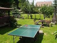 stolní tenis v zahradě