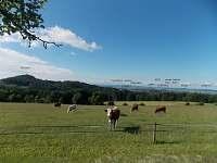 """příjezd od Klepandy, pohled """"do kraje"""", cca 0,5 km východně od chalupy"""