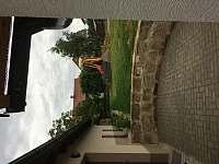 Herní ostrůvek s lanovkou na horní zahradě - Vyskeř