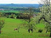 blízké okolí - Chloumek