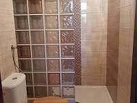koupelna - pronájem rekreačního domu Kopidlno