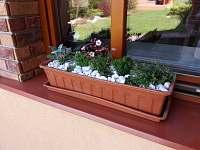 zahrada - rekreační dům ubytování Kopidlno