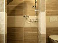 apartmán 2 podkroví samostatná koupelna pokoj 1 - Nová Paka