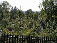Chata Paulo 1 - chata - 14 Mírová pod Kozákovem - Smrčí