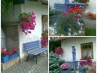 zahrada u penzionu - ubytování Lázně Bělohrad