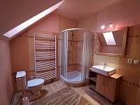Apartmán 3- koupelna se záchodem - k pronájmu Jičín