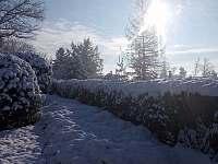 Zahrada - chata k pronájmu Ktová (Rovensko pod Troskami)