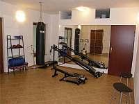 Fitness - rekreační dům k pronajmutí Koberovy - Zbirohy