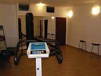 Fitness - pronájem rekreačního domu Koberovy - Zbirohy