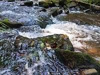 Řeka Oleška - pronájem chalupy Libštát