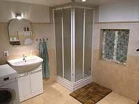Koupelna v přízemí - roubenka k pronajmutí Libošovice