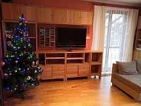 vánoční stromeček - Turnov - Pelešany