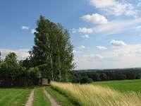 příjezdová cesta kolem pole k chalupě
